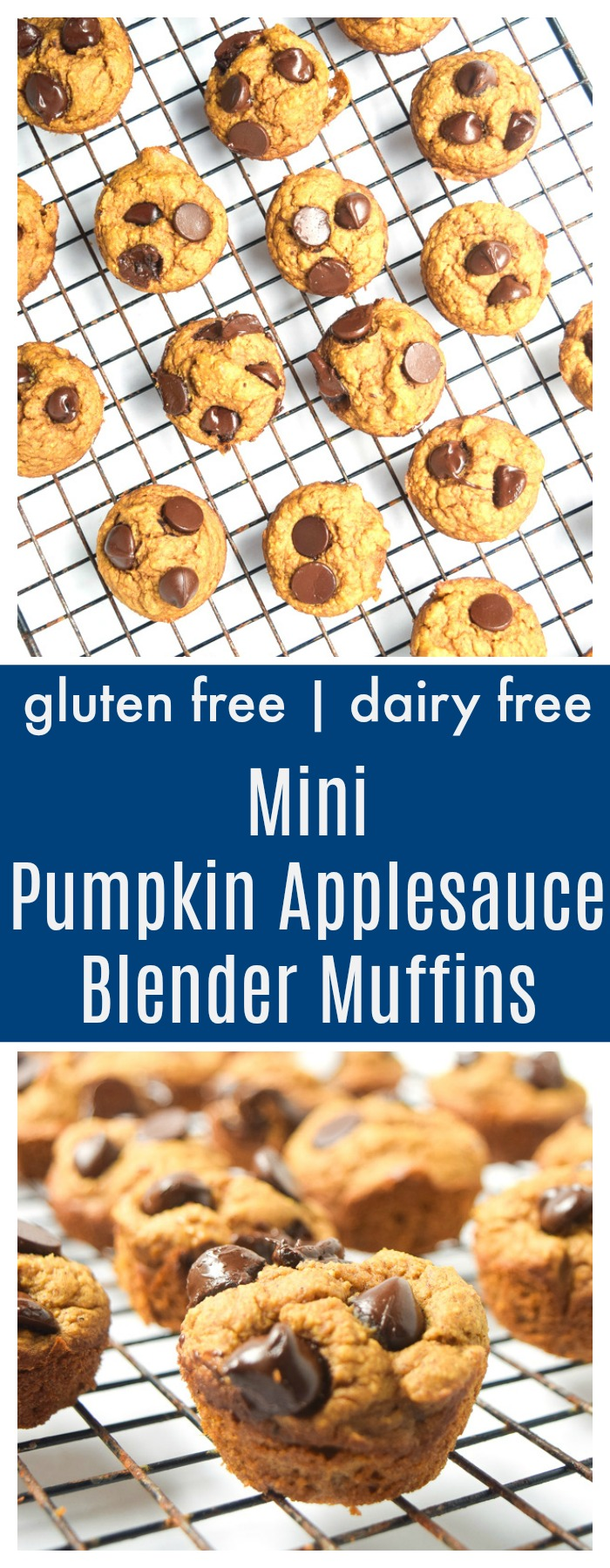 pumpkin applesauce blender muffins