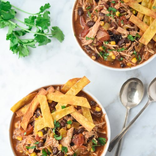 Instant Pot Mexican Chicken Tortilla Soup